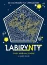Labirynty. 30 fascynujących łamigłówek praca zbiorowa