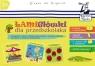 Kapitan Nauka. Łamigłówki dla przedszkolaka (poradnik dla opiekunów + zagadki obrazkowe + karty z ćwiczeniami + flamaster)