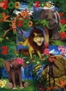 Zeszyt A5 Top-2000 w kratkę 16 kartek Zoo mix