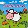 Mała owieczka Mini zwierzątka