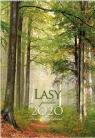 Kalendarz 2020 Reklamowy Lasy Polskie RW05