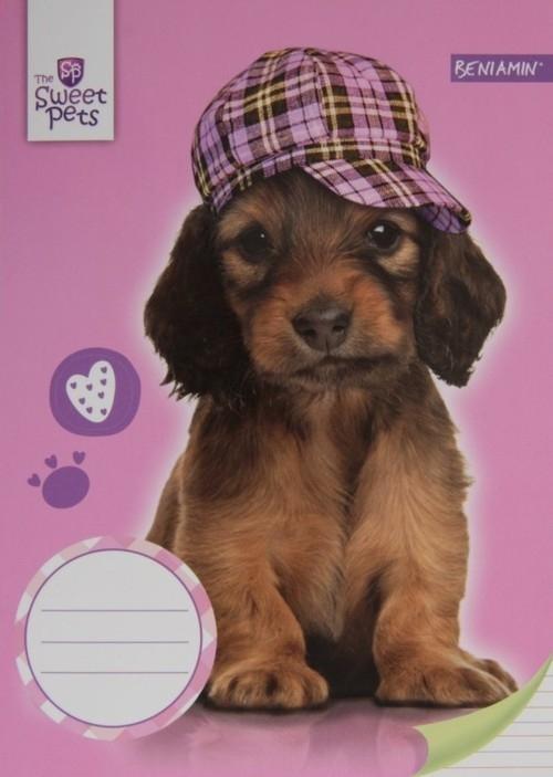 Zeszyt A5 Sweet Pets w trzy linie 16 kartek