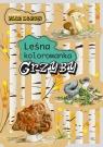 Leśna kolorowanka Grzyby Kopiec-Sekieta Katarzyna, Goszczyńska Eliza