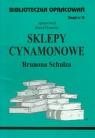 Biblioteczka opracowań Sklepy cynamonowe Brunona Schulza