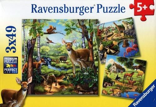 Puzzle Zwierzęta 3x49 (RAP092659)