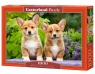 Puzzle 1000 Welsh Corgi Puppies