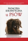 Padaczka idiopatyczna u psów