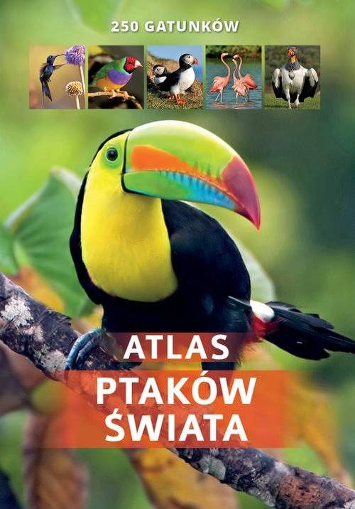 Atlas ptaków świata 250 gatunków/SBM Twardowska Kamila, Twardowski Jacek