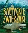 Bałtyckie zwierzaki Wojtkowiak-Skóra Patrycja