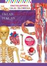 Encyklopedia ciała człowieka. Układ szkieletowy i układ mięśniowy