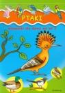 Ptaki Malowanki dla dzieci od lat 2