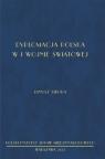 Dyplomacja polska w I wojnie światowej