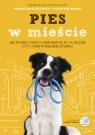 Pies w mieście. Jak wypracować dobre nawyki, by spokojnie żyć z psem w Magdalena Horodyska, Katarzyna Migdał