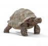 Żółw gigant (14824)