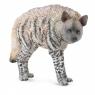 Hiena prążkowana