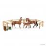 Rodzina koni hanower na pastwisku - 42405