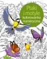 Ptaki i motyle. Koloruj według numerów