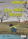 Czytam po angielsku The Wild Wood/O czym szumią wierzby Akman Olga