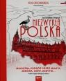 Niezwykła Polska Kolorowanka Incredible Poland