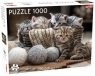 Puzzle 1000: Małe kotki