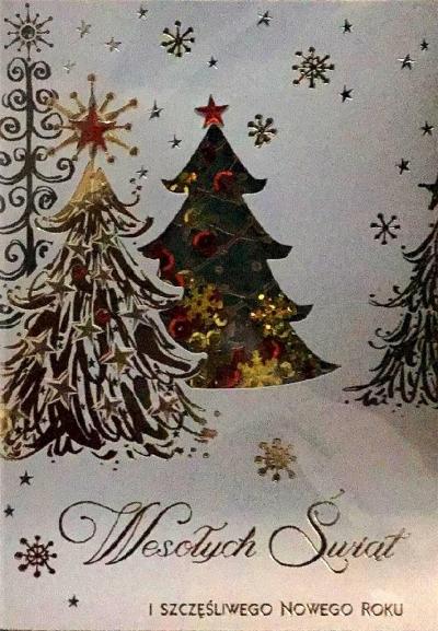 Karnet Boże Narodzenie B6 Premium 22 + koperta