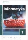 Informatyka 1. Podręcznik. Zakres rozszerzony. Liceum i technikum