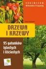 Drzewa i krzewy Vademecum Miłośnika Przyrody95 gatunków iglastych i Hryniewicki Tomasz