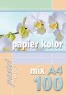 Papier kolorowy A4 100k 160g pastel mix kolorów