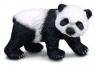 Niedźwiadek pandy wielkiej stojący S (88167)