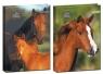 Brulion A5 w kratkę 96 kartek Konie mix
