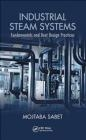 Industrial Steam Systems Mojtaba Sabet