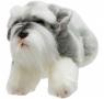 Leżący pies Sznaucer 30 cm