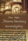 Historia literatury staroindyjskiej Mylius Klaus