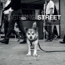 Mastering: Street Photography The Definitive Guide for Photographers Duckett Brian Lloyd