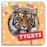 Dotykam i Poznaję Tygrys