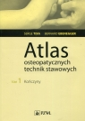 Atlas osteopatycznych technik stawowych Tom 1 Kończyny Tixa Serge, Ebenegger Bernard