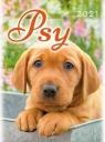 Kalendarz 2021 Ścienny Psy ARTSEZON