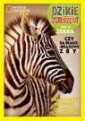 Dzikie Zwierzęta Tom 16 Zebra