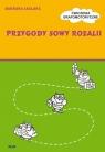 Przygody sowy Rozalii-Ćwiczenia grafomotoryczne