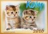 Kalendarz rodzinny 2016 Koty