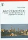 Role Unii Europejskiej w regionie Afryki Północnej i Bliskiego Wschodu