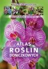 Atlas roślin doniczkowych 200 gatunków ozdobnych Mederska Małgorzata