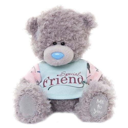 Miś 18 cm w koszulce Special Friend