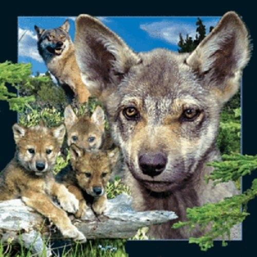 Magnes 3D - Młody wilk