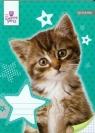 Zeszyt A5 Sweet Pets w kratkę 16 kartek Kot