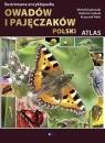 Ilustrowana encyklopedia owadów i pajęczaków