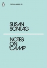 Notes on Camp Sontag Susan
