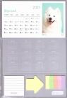 Kalendarz 2021 Biurkowy I love Dogs