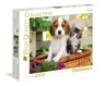 Puzzle Pies i Kot  The Dog and the Cat 1000 (39270)