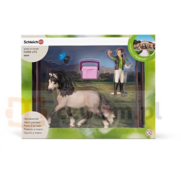Zestaw do pielęgnacji koni - 42270